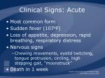 clinical signs acute