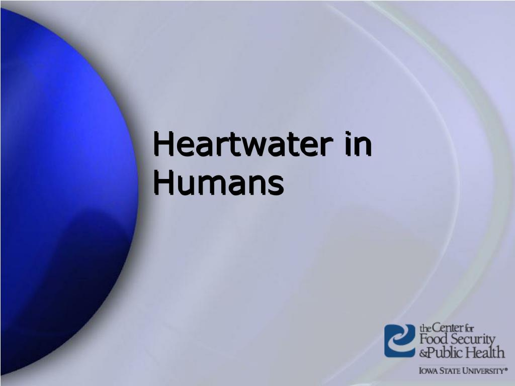 Heartwater in Humans