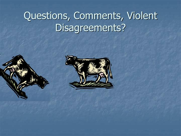 Questions, Comments, Violent Disagreements?