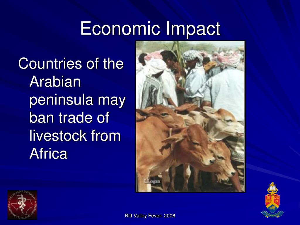 Countries of the Arabian peninsula may ban trade of livestock from Africa