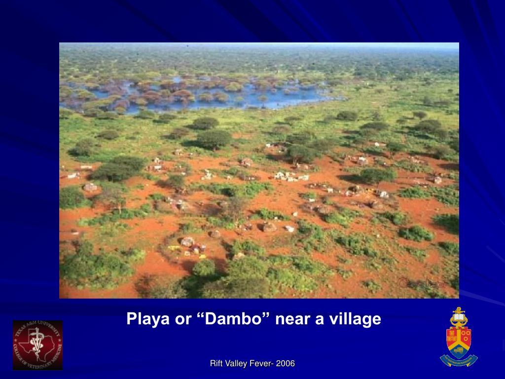 """Playa or """"Dambo"""" near a village"""