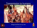 transmission to humans65