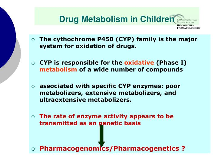 The cythochrome P450 (CYP) family is the major system for oxidation of drugs.
