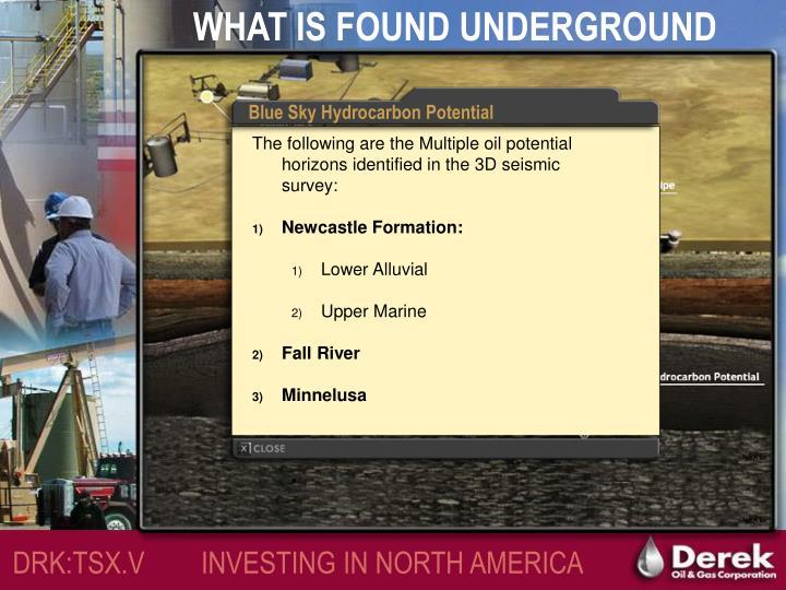 WHAT IS FOUND UNDERGROUND