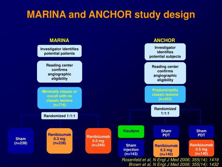 MARINA and ANCHOR study design