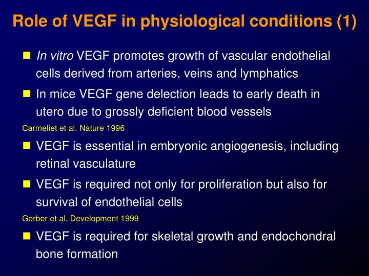Role of VEGF in physiological conditions (1)