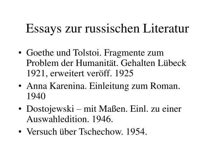 Essays zur russischen Literatur