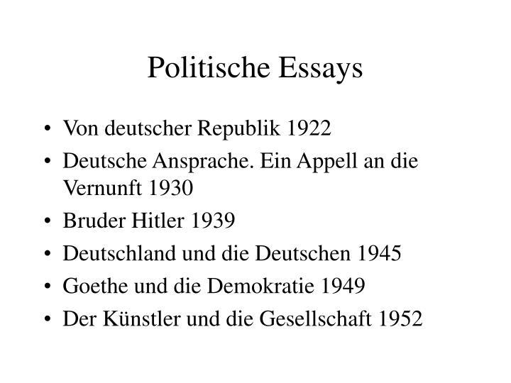 Politische Essays