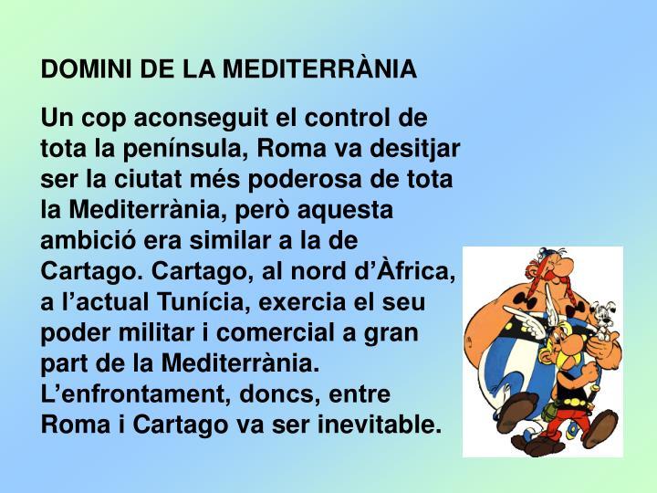DOMINI DE LA MEDITERRÀNIA