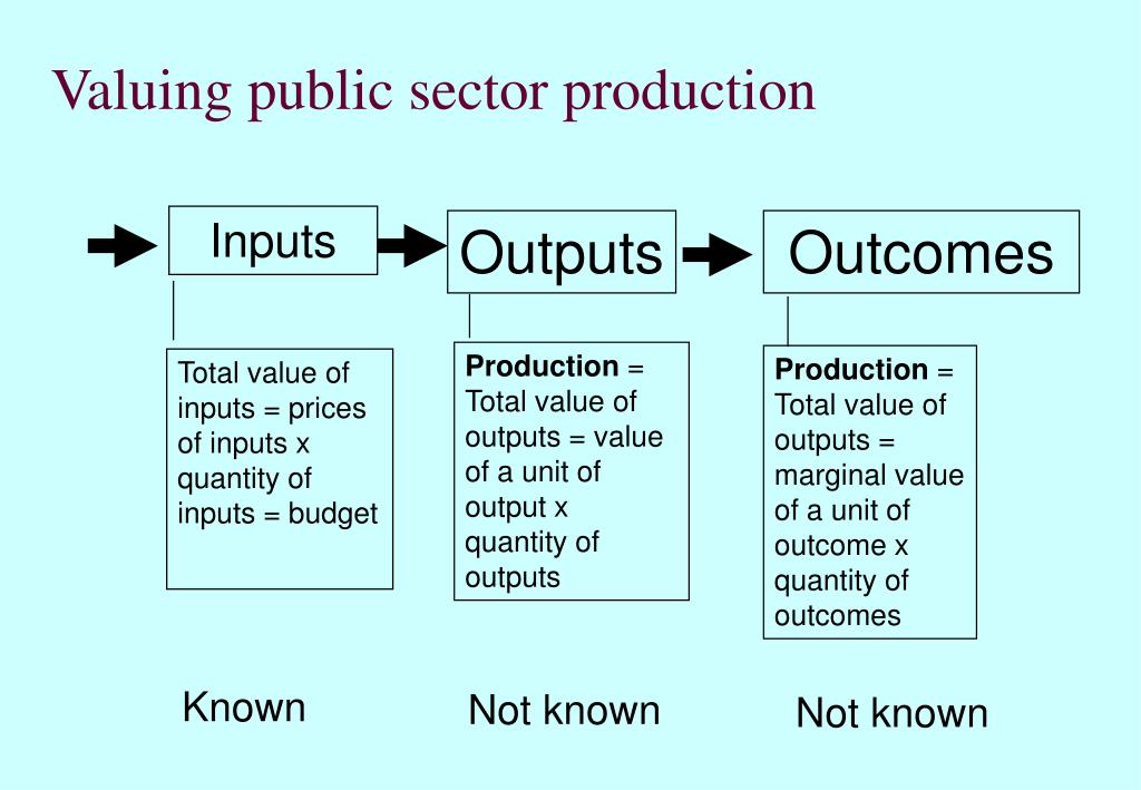 Valuing public sector production