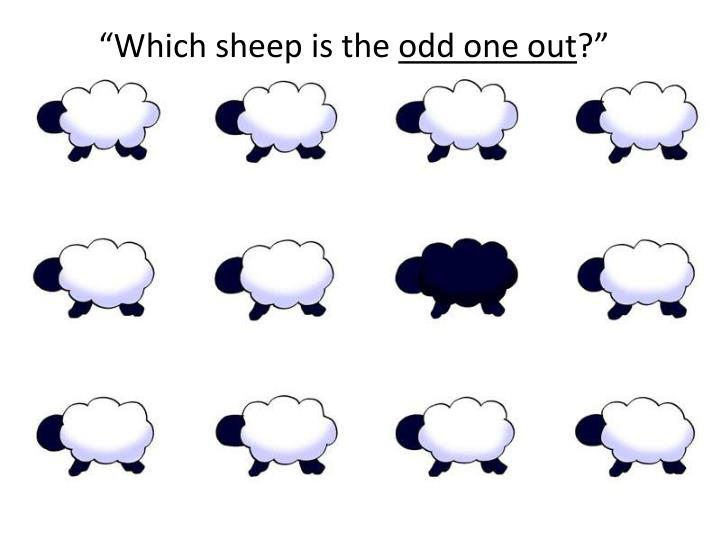 """Which sheep is the"
