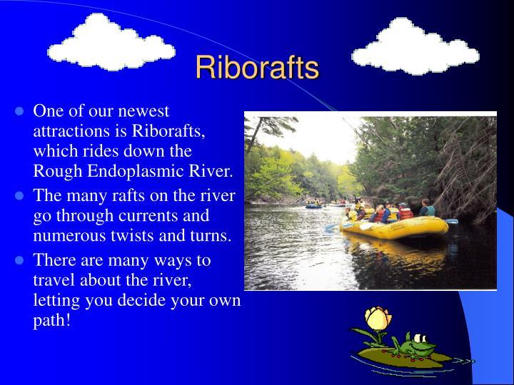 Riborafts