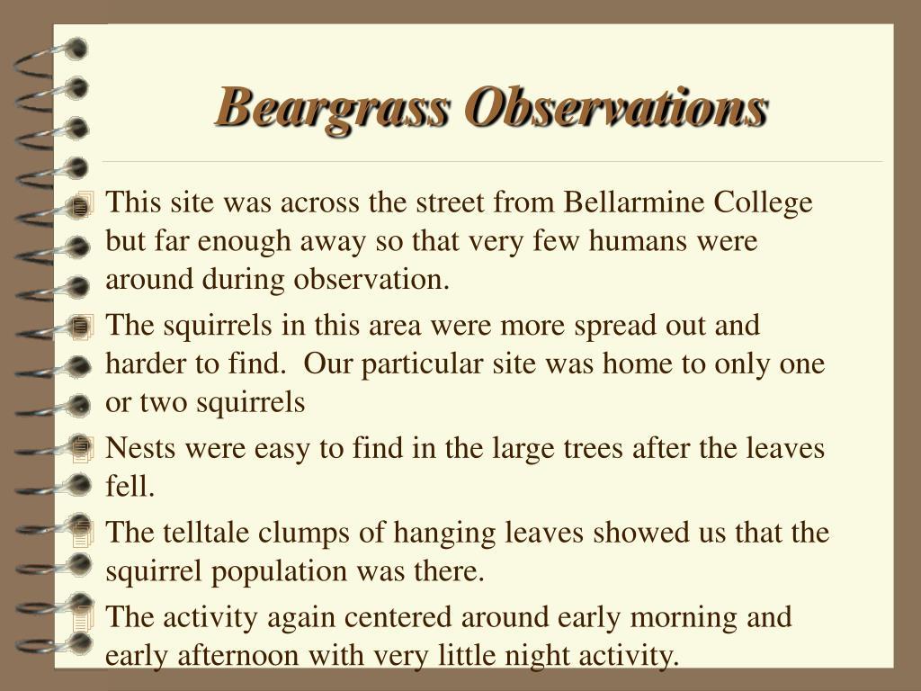 Beargrass Observations