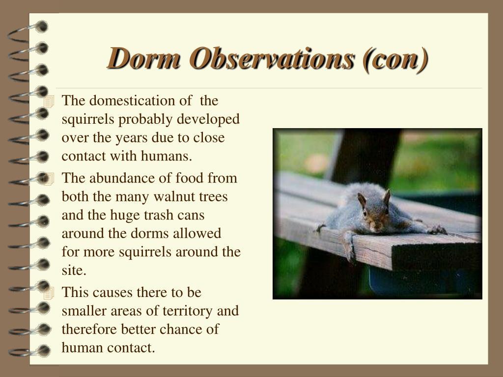 Dorm Observations (con)
