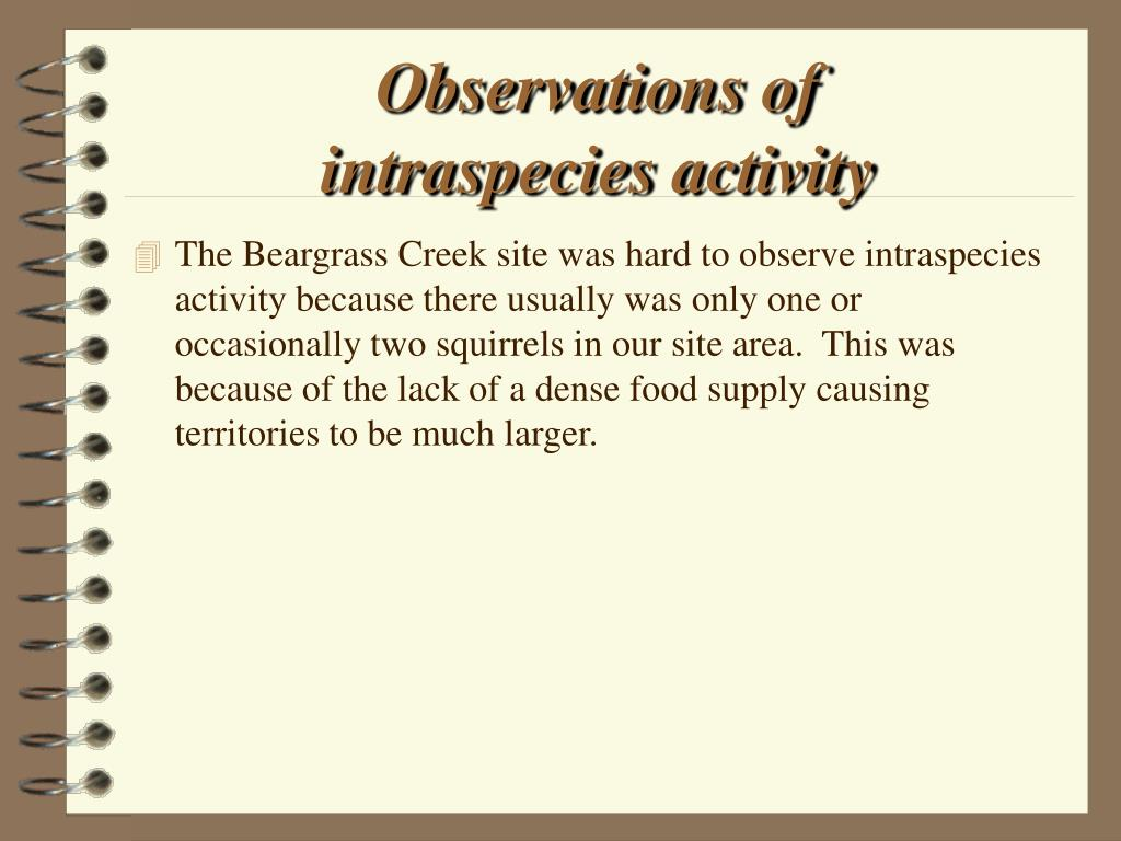 Observations of