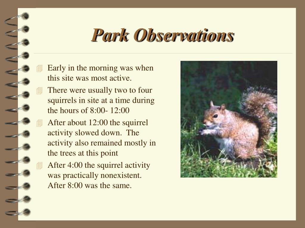 Park Observations