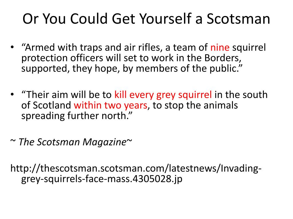 Or You Could Get Yourself a Scotsman