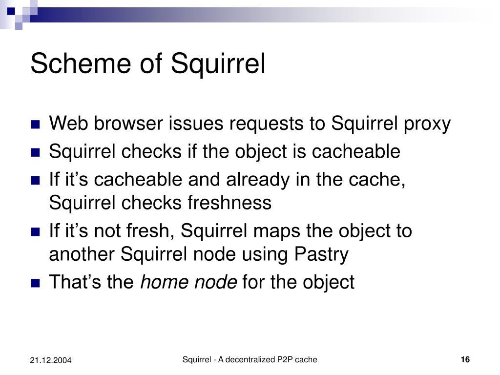 Scheme of Squirrel