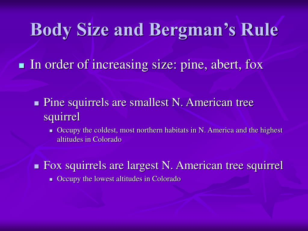 Body Size and Bergman's Rule