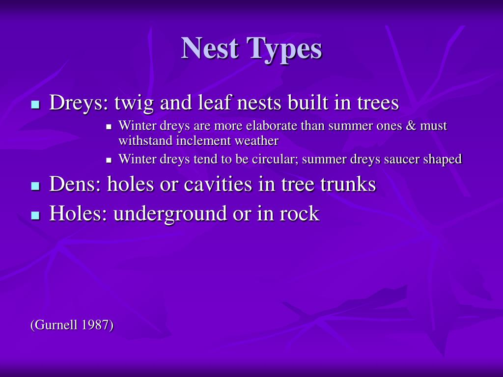 Nest Types