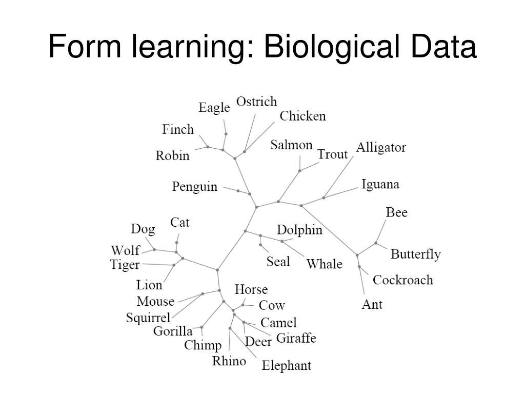 Form learning: Biological Data