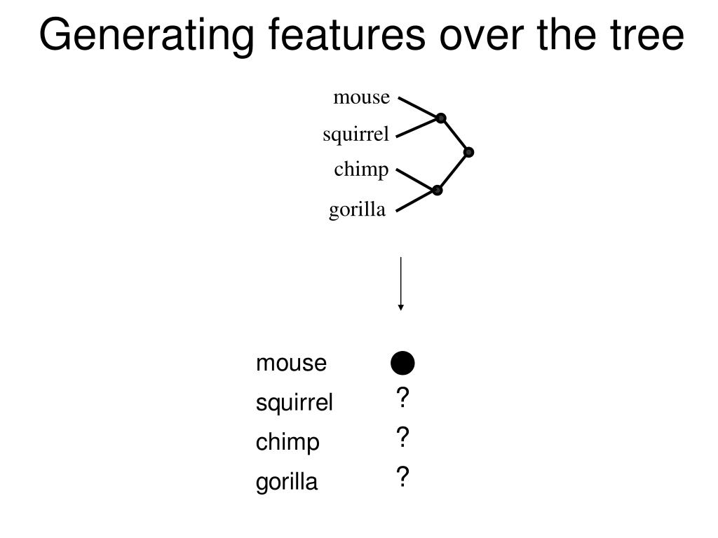 Generating features over the tree