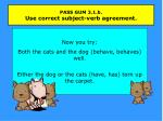 pass gum 3 1 b use correct subject verb agreement2