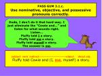 pass gum 3 1 c use nominative objective and possessive pronouns correctly2