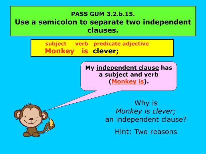 PASS GUM 3.2.b.15.