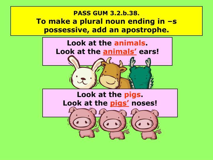 PASS GUM 3.2.b.38.