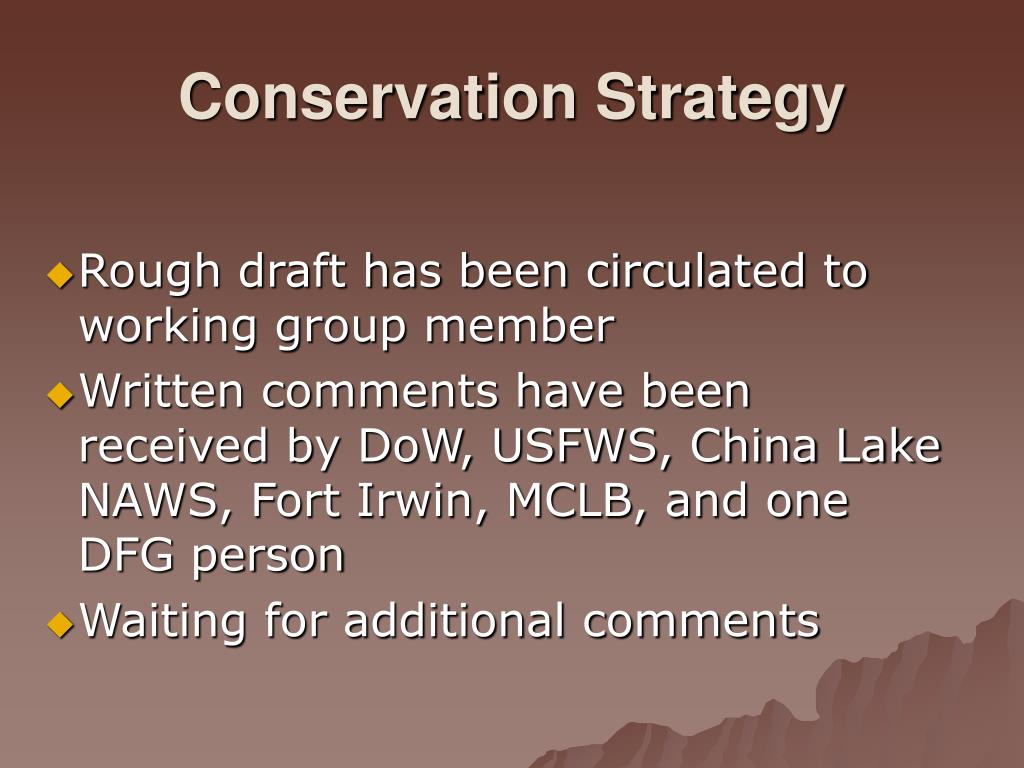 Conservation Strategy