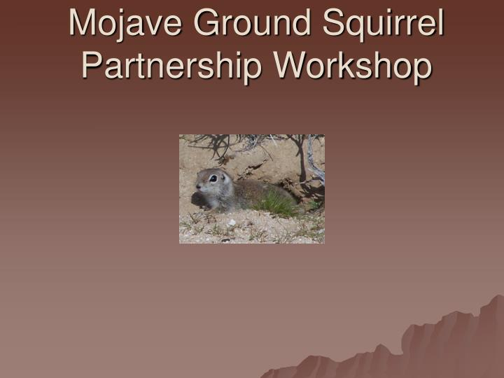 Mojave ground squirrel partnership workshop