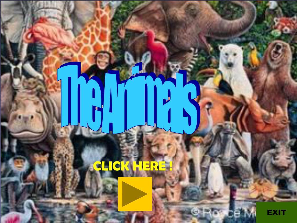 The Animals