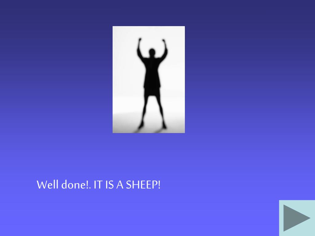 Well done!. IT IS A SHEEP!