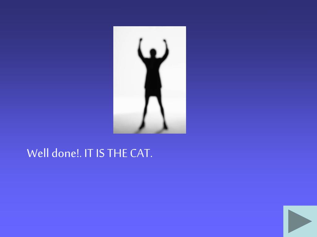 Well done!. IT IS THE CAT.
