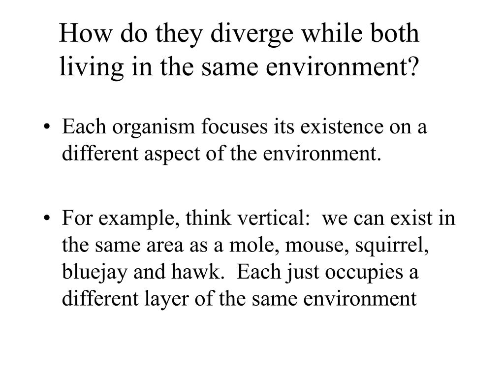 How do they diverge while both living in the same environment?