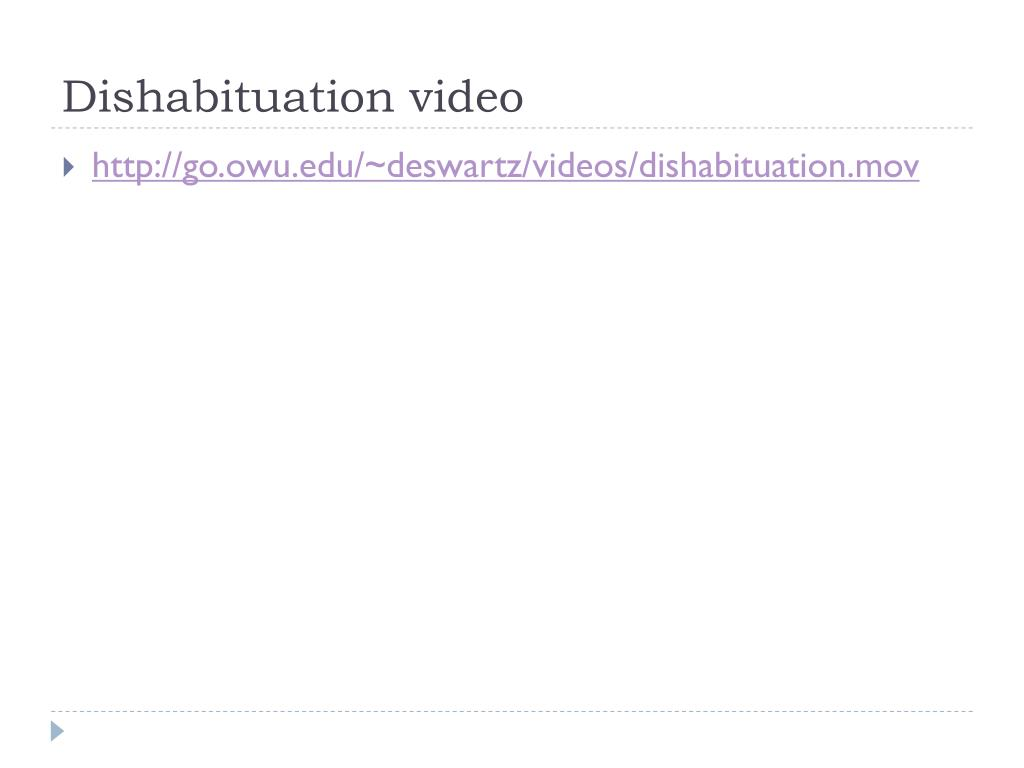 Dishabituation video