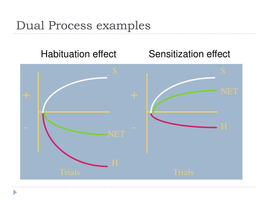 Dual Process examples