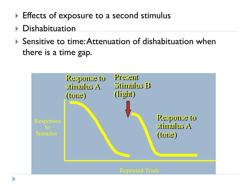 Effects of exposure to a second stimulus