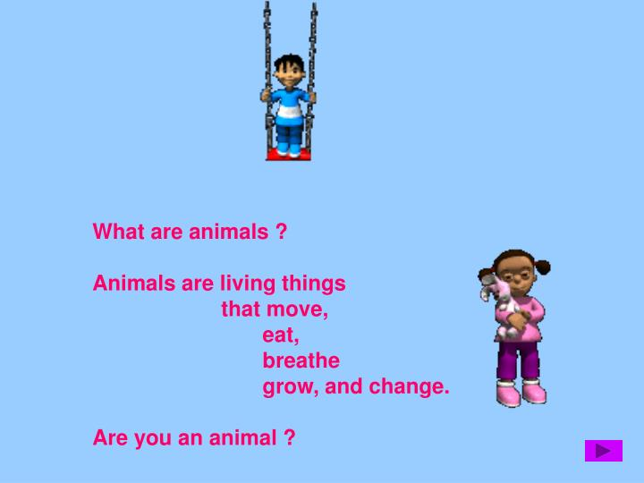 What are animals ?