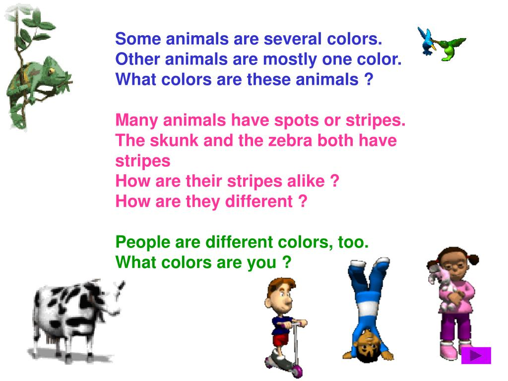 Some animals are several colors.