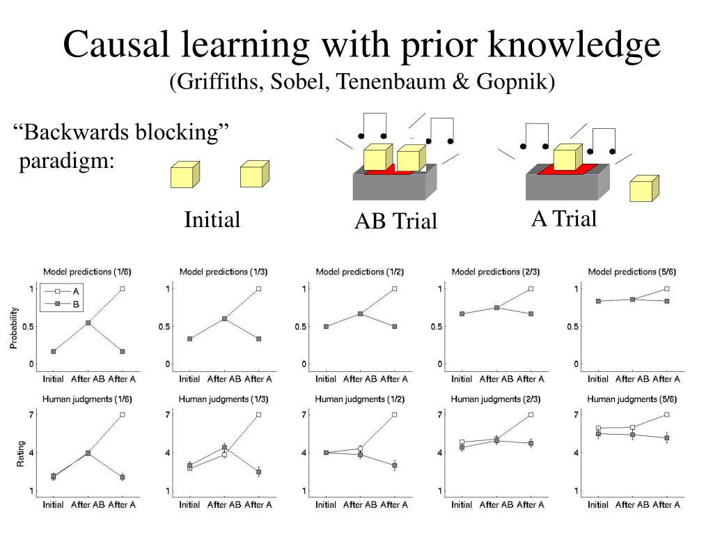 Causal learning with prior knowledge
