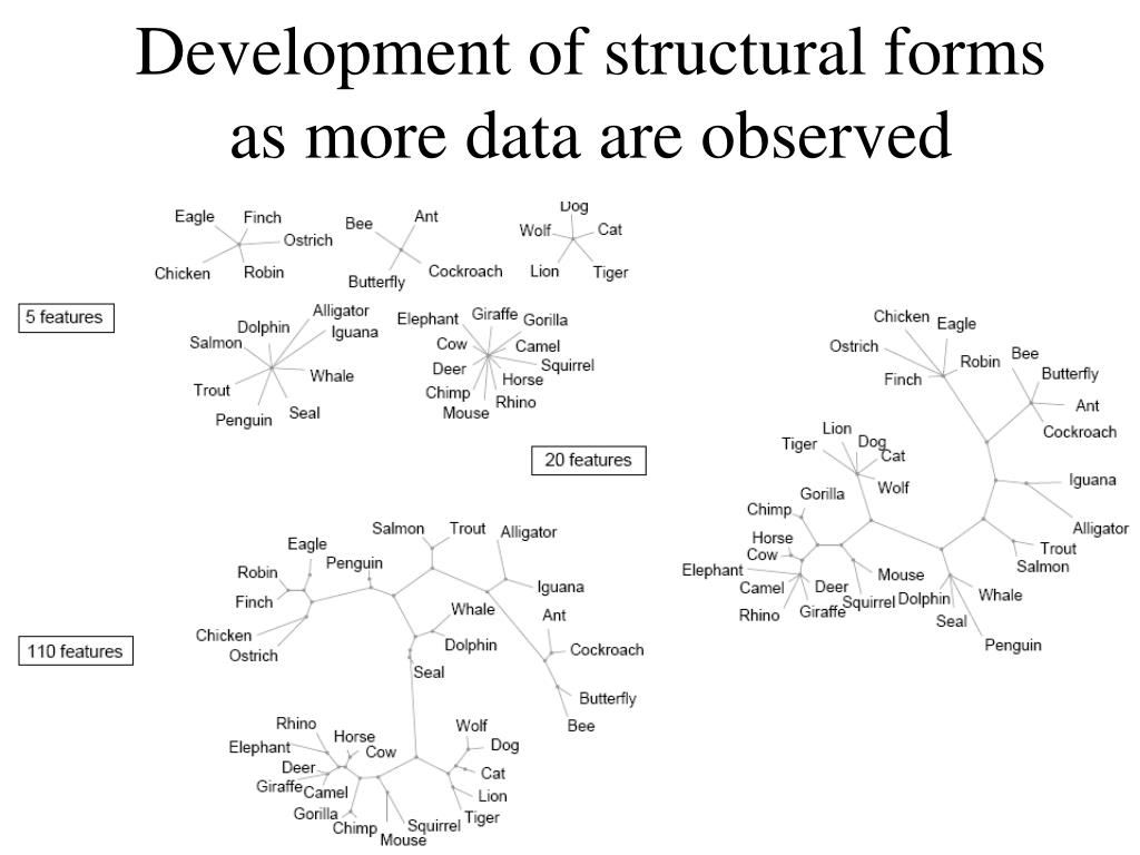 Development of structural forms as more data are observed
