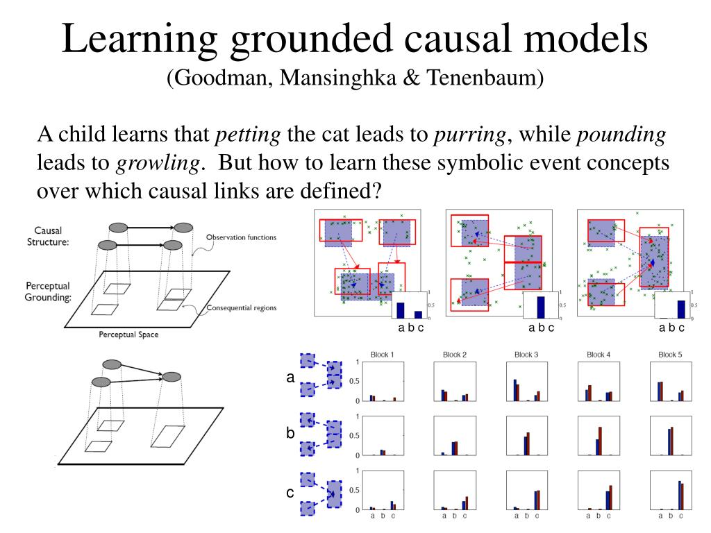 Learning grounded causal models