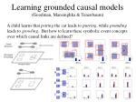 learning grounded causal models goodman mansinghka tenenbaum