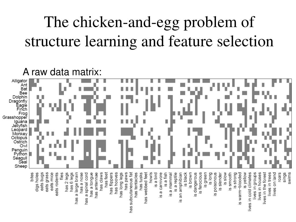 The chicken-and-egg problem of structure learning and feature selection