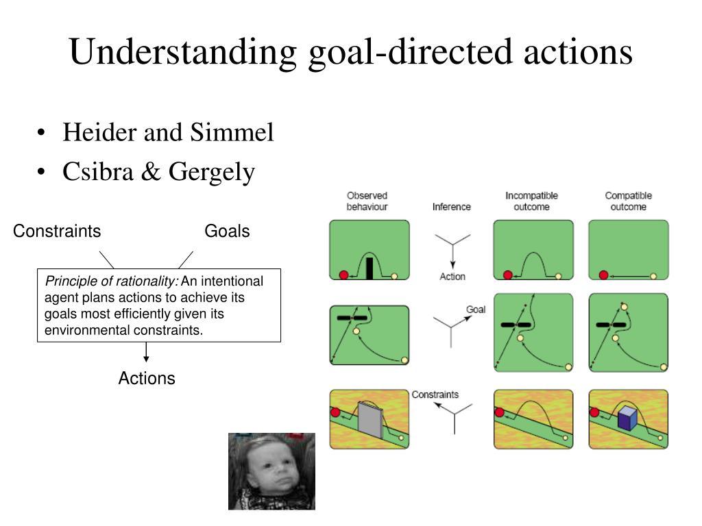 Understanding goal-directed actions