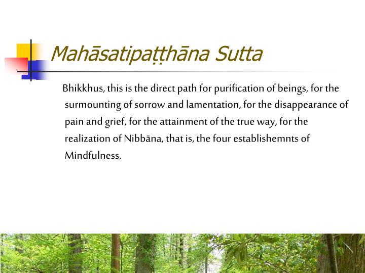 Mahsatipahna Sutta