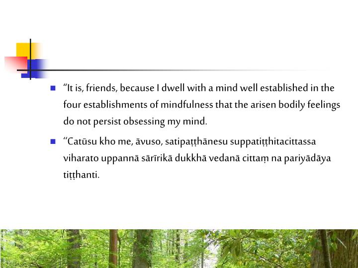 """""""It is, friends, because I dwell with a mind well established in the four establishments of mindfulness that the arisen bodily feelings do not persist obsessing my mind."""