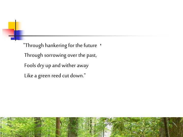 """""""Through hankering for the future"""